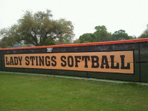Lady Stings WS Banner